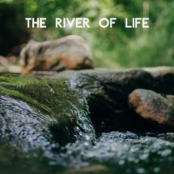 "Home Liturgy May 31st 2020: ""The River of Life"">"